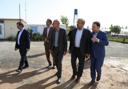 بازدید اعضای شورای اسلامی شهر قم از مرکز تحقیقات، آموزش و تولید گلها و گیاهان زینتی شهرداری قم